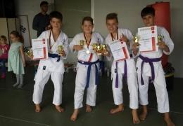 1. Karate Tiger Cup
